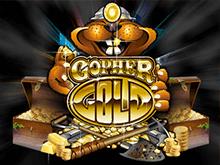 Gopher Gold - попробуйте сыграть введя бонусный код казино Вулкан